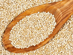 Quinoa: What You Need to Know