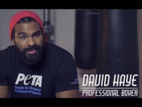 VIDEO: Heavyweight Boxing Champion David Haye Takes A Jab at Meat Industry in PETA Ad