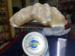 World's largest pearl? 34kg giant pearl found in Palawan