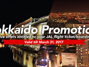 Journey with Japan Airlines by these exciting promos!