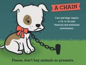 PETA Campaign Urges People NOT to Buy Animals as Christmas Presents