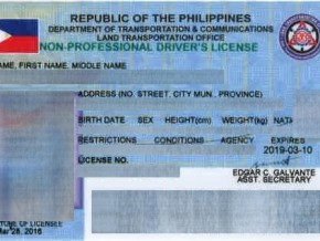 LTO releases 700k driver's license cards
