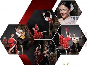 Don Quixote (Ballet Manila's 21st Performance Season) on Feb 24-26, 2017