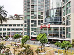 Ayala Land is opening 5 new shopping malls this year