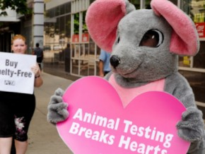 'Animals' To Spread Message of Love for Valentine's Day