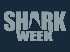 Shark Week 2017: #TeamPhelps vs #TeamShark to kick off Shark Week