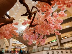 Shangri-La Plaza Celebrates Japanese Culture This Month of July