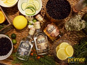 Archipelago Botanical Gin Is Now Available in the Philippines