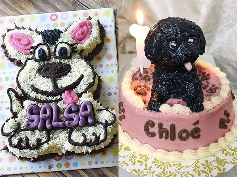 Pleasant 5 Shops Where You Can Order Cakes For Your Pets Philippine Primer Funny Birthday Cards Online Ioscodamsfinfo