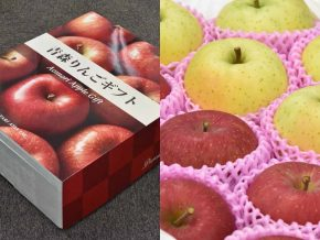 Watari Asia to Accept Orders for Japan Apple Gift Starting November 1