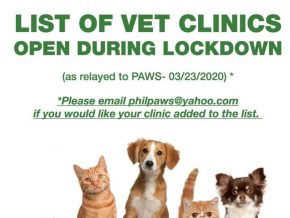 LIST: Veterinary Clinics in PH That Are Open for Service During ECQ