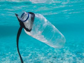 Uniform Policy Against Single-Use Plastics To Ease PH Pollution Problem