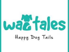 Wagtales: An app for your furry buddies