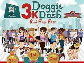 3K Doggie Dash: Run Fur Fun