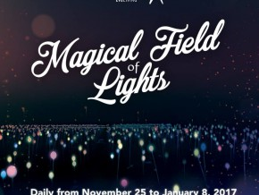 Experience the first-ever 'Magical Fields of Light' in Nuvali