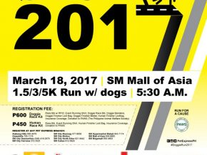 Pet Express Doggie Run 2017