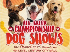 Back to Back International All-Breed Championship Dog Shows
