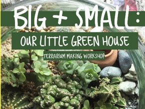 Smartyplant PH's Terrarium Making Workshop for Families
