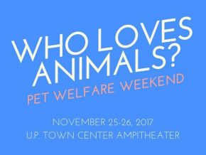 Who Loves Animals? A Pet Welfare Weekend