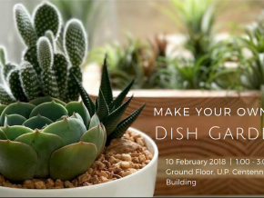 Make Your Own Dish Garden Hands-on Workshop