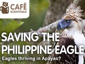 The Mind Museum Presents Cafe Scientifique: Saving the Philippine Eagle