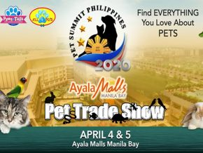 Catch Pet Summit Philippines, the Country's Largest Pet Trade Show This April