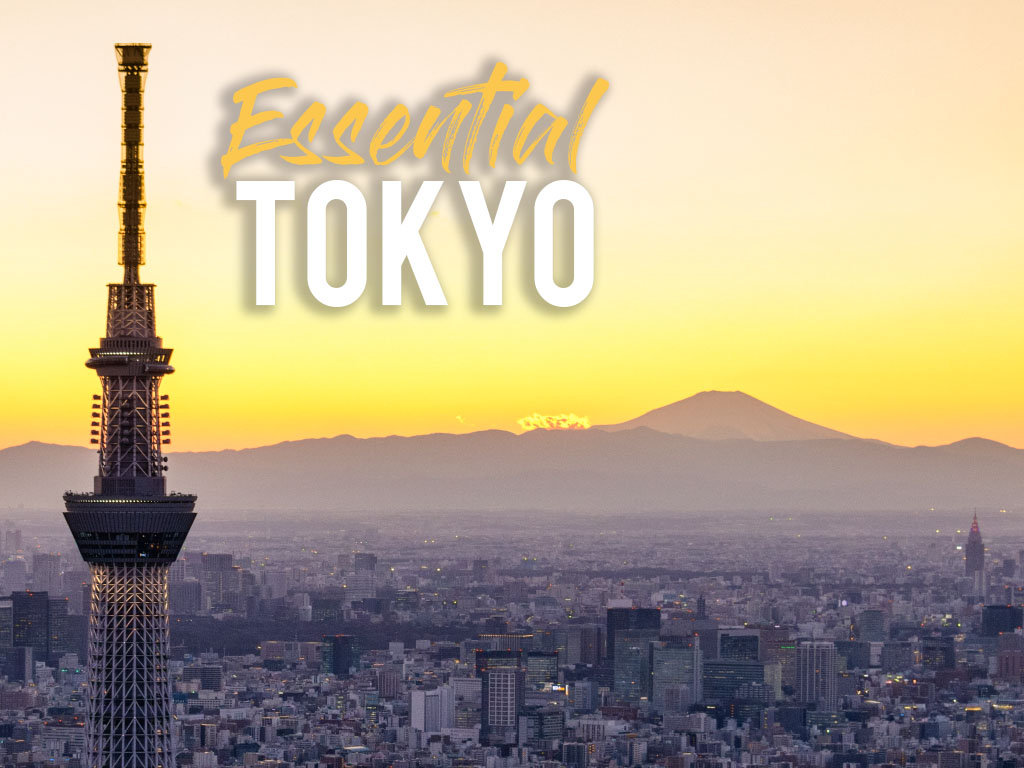 Essential Tokyo: Hottest Spots for Every Tourist