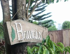 Bawai's