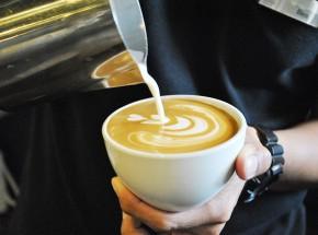 Kuppa Roastery & Café