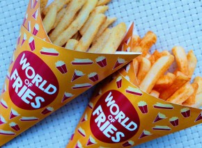 World of Fries