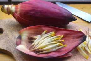 Banana Blossom: 3 Flowery Recipes to Try