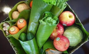 Healthy Eater, Organic Lover? Here's a List of Online Veggie Grocery Stores You Can Rely On