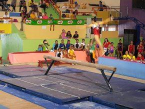 Philippine Gymnastics And Athletics Academy