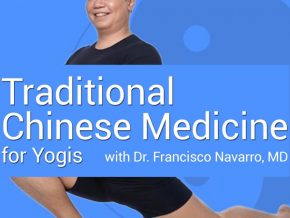 Traditional Chinese Medicine for Yogis Workshop Series