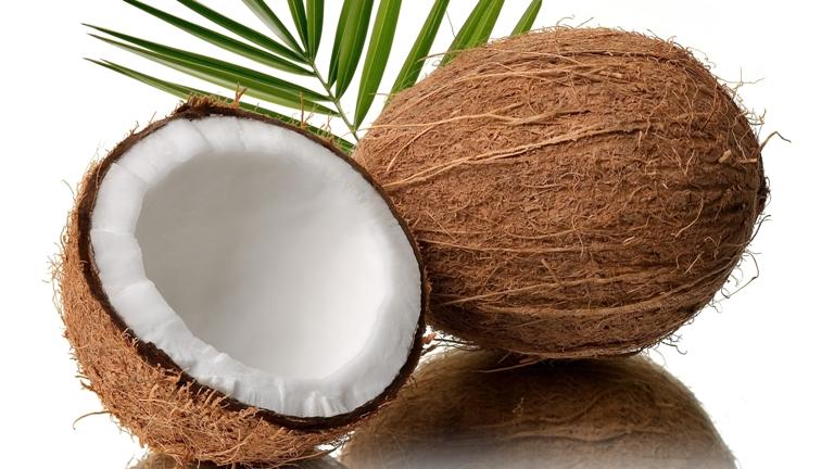 coconut1-1
