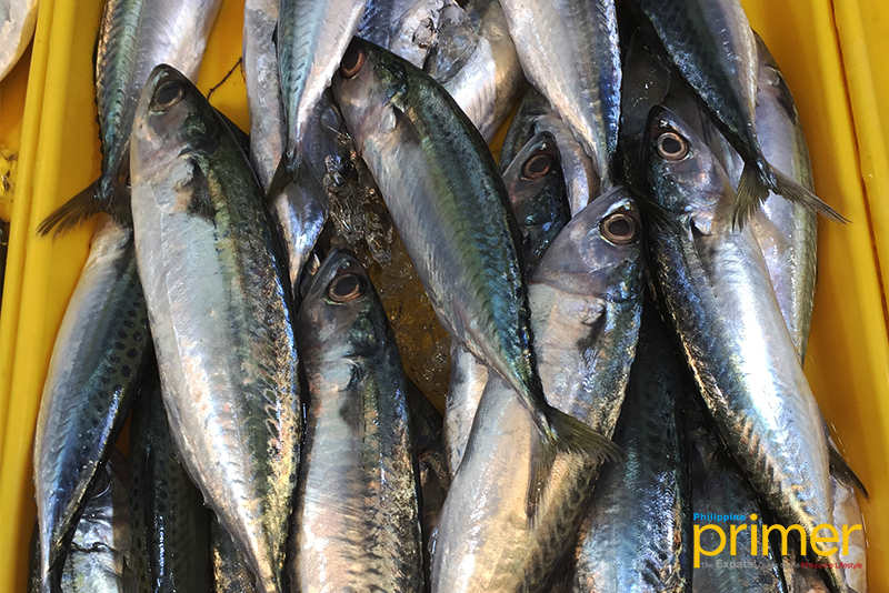 Market Guide to Common Fishes in the Philippines | Philippine Primer