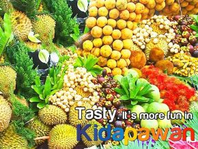 Timpupo Fruit Festival in Kidapawan City: A celebration of Culture, Harvest and Fruits