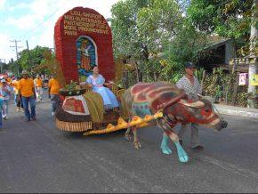 Carabao-Carroza Festival in IloIlo