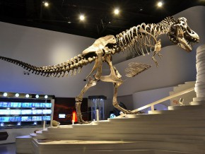 The Mind Museum in BGC: A World-Class Science Museum in Manila