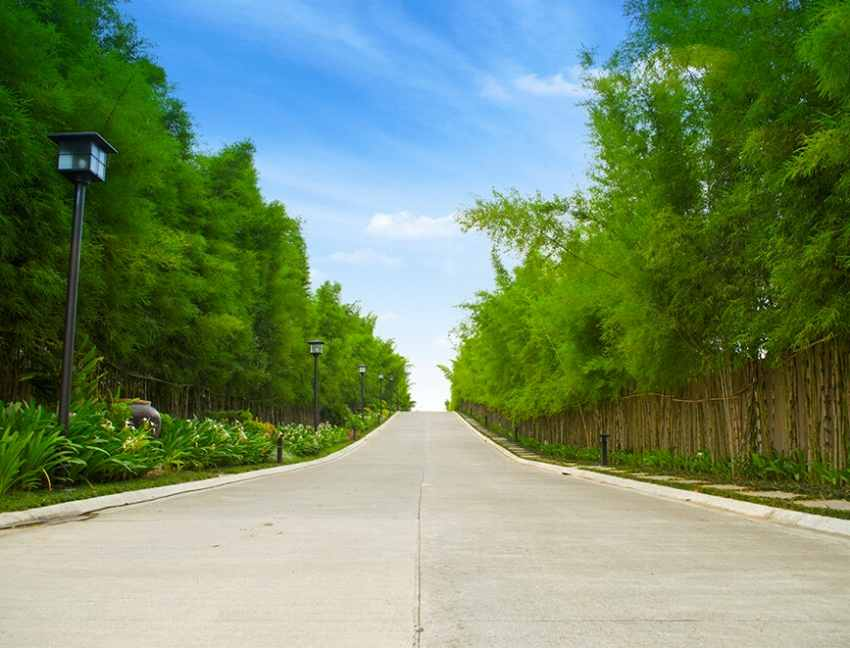 Anya_Entrance_Road