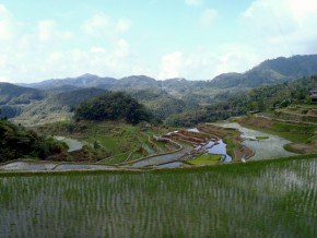 Batad Rice Terraces: Backpacking for Starters