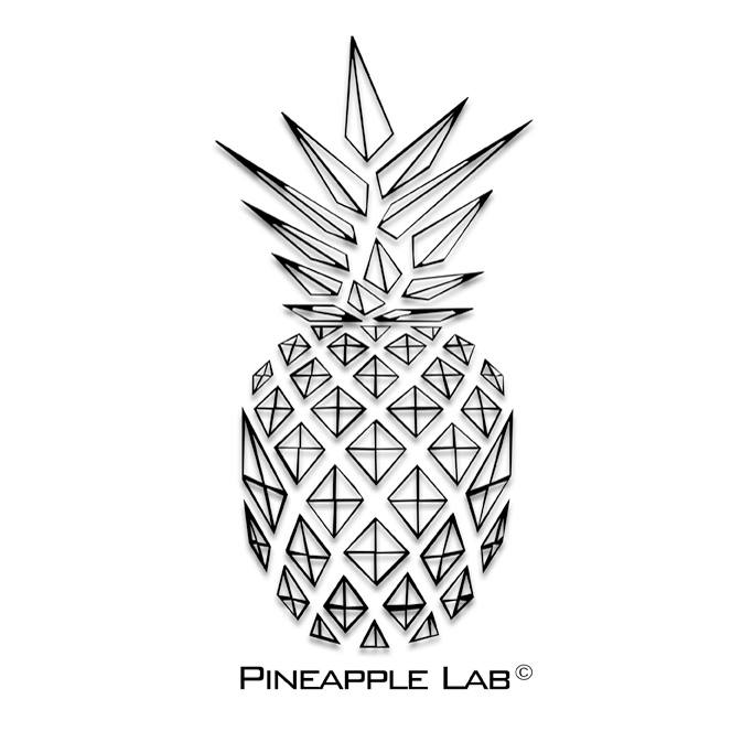 a pineapple lab Shop the bikini lab pineapple reversible swimwear top for women at buckle com the buckle carries the latest bikini lab products and styles, so come back.