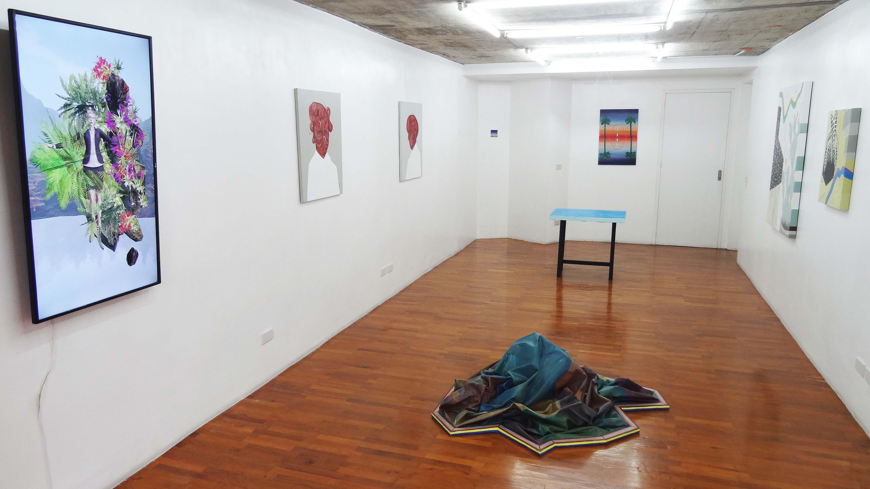 installation-shot-at-the-main-gallery