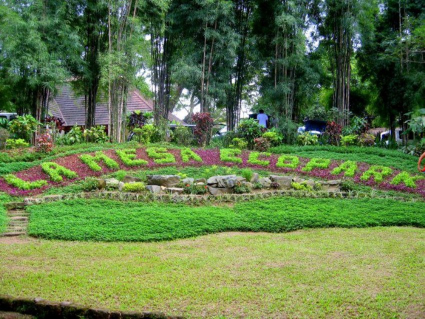 A list of the best ecotourism spots in the philippines - La mesa eco park swimming pool photos ...
