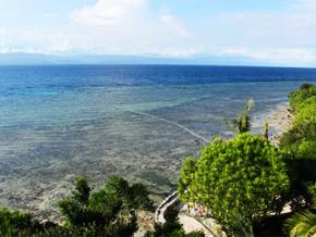 Blue Orchid Resort