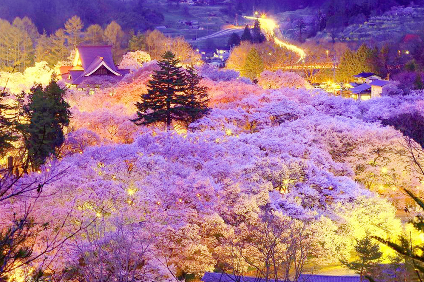 10 reasons why nagano japan should be your next destination this