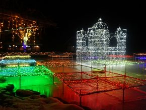 Nagano's ALPS Azumino National Government Park: Witness a Dazzling Illumination Display