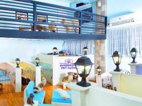 Doggieland Pet Hotel, Nursery and Resort in Pasig City
