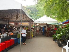 One Day Guide to Legazpi Sunday Market