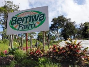 Look: Bemwa Farm in Davao City